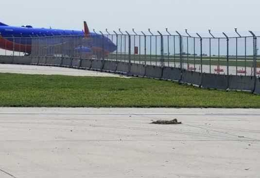 Kansas City International Airport Terminal Expansion Project Hilmerson Safety Barrier Fence System